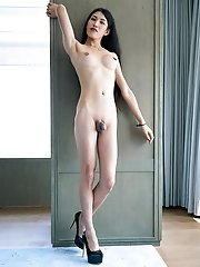 Allison incredible slender shemale from china