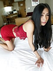 25yo hot Thai ladyboy taking white cock up her ass